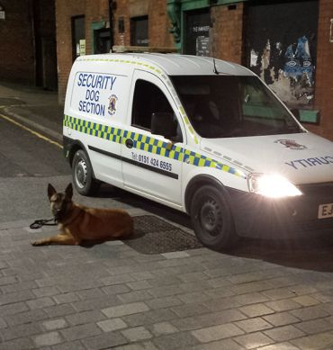 Guard Dog Services